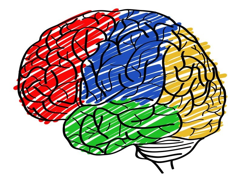 School neuropsychology